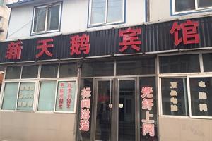 葫芦岛新天鹅宾馆