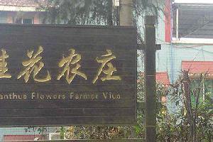 重庆北碚桂花农庄