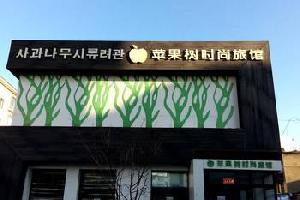 汪清苹果树时尚旅馆