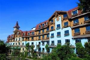 深圳东部华侨城黑森林酒店