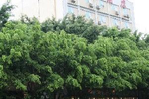 潮州开发区绿洲酒店