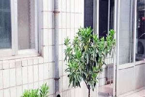 唐山市有缘公寓二店