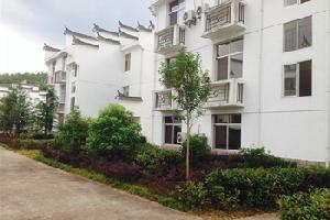 泰宁三明泰可生活方式酒店